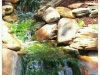 waterfall-256933_10150638125395174_723090173_19136970_608868_o
